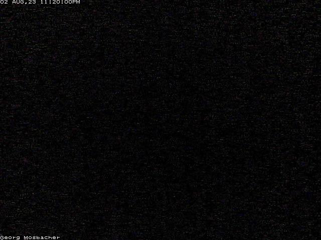 Webcam Forst Pfalz - Weinlage Freundstück